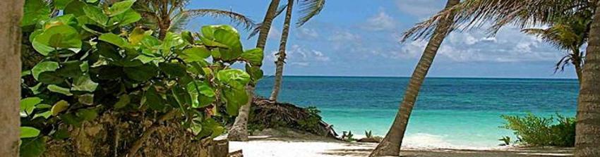 CW Group - Playas de Playa del Carmen